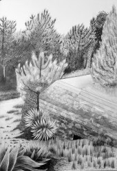 Soulac su Mer, Mine graphite sur papier aquarelle, 76 x 56 cm, 2016.