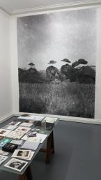 Headless, un passé composé, La Conserverie, Metz, 2017.