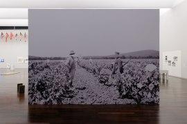 Travail de la vigne, région de Bône (Annaba), 1933. Papier peint, 480 x 350 cm, 2017. Exposition «Tous des sang mêlés », Mac Val, Vitry-sur-Seine.